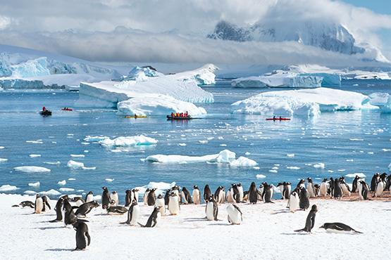איי שטלנד הדרומיים וחצי האי האנטארקטי