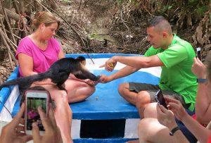 ספארי קופים, טיול עצמאי לקוסטה ריקה