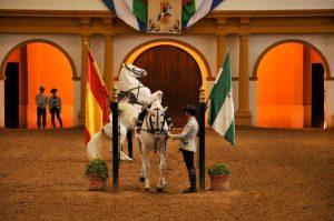 מופע סוסים, אנדלוסיה